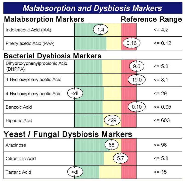 Malabsorption and Dysbiosis Markers