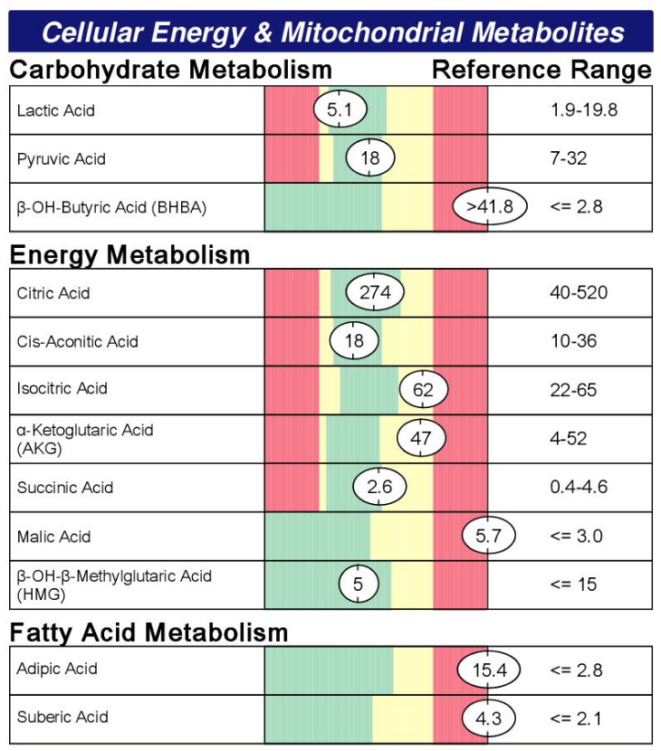 Cellurlar Energy & mitochondrial Metabolites